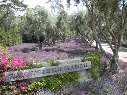small wedding venues santa barbara san ysidro ranch wedding venues southern california weddings
