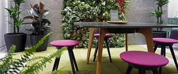 Biophilic Design In The Workplace The Benefits Of Biophilic Design In The Workplace Truspace