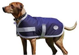 Weatherbeeta Landa Reflective Dog Blanket Chicksaddlery