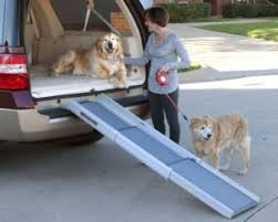 1.8 aus welchem material soll ich die treppe für meinen hund bauen? Hunderampe Test Auf Oe24 At Test Vergleich 2020