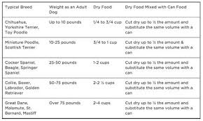 Toy Poodle Feeding Chart Dog Feeding Tips How Much And How Often Should I Feed My