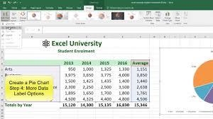 Excel Chart Examples Excel Example Student Enrollment Pie Chart