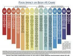 Food Impact On Body Ph Chart Food In 2019 Ph Food Chart