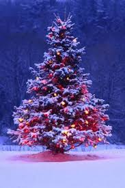 christmas trees decorated outside snow. Modren Decorated Outdoor Christmas Tree With Lights And Snow Intended Trees Decorated Outside Snow H