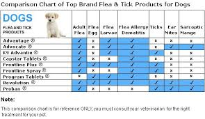 Dog Flea And Tick Products And Comparisons Can Dogs Eat