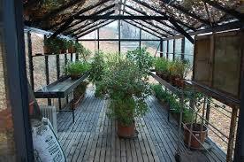 victorian greenhouse vi36