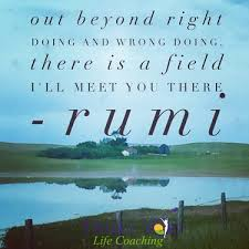 Image result for the field of right and wrong doing rumi pictures