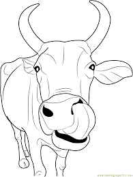 I think your kids will have fun while coloring the animals with you. Indian Cow Face Printable Coloring Page For Kids And Adults Cow Illustration Cow Coloring Pages Cow Drawing