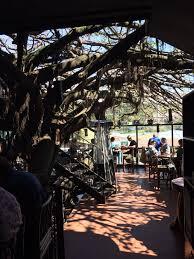Hidden Canopy Tree Houses Monteverde Costa RicaTreehouse Monteverde Costa Rica