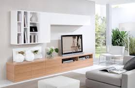 Wall Cabinets Living Room Amazing Storage Furniture For Living Room Wall Unit And Tv Cabinet