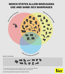 Wedding Diagram States Where You Can Get High At A Same Sex Wedding In One Chart Vox