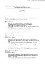 Sample Account Executive Resume Packaging Manager Resume Sample