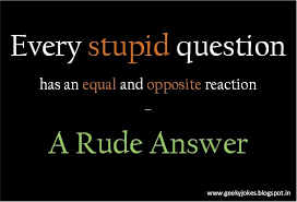 Quotes About Asking Questions Gorgeous Quotes Questions Awesome Stop Asking Stupid Questions Humour Quotes