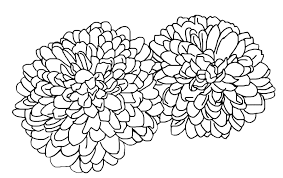 Bộ sưu tập các bức tranh tô màu hoa cúc cho bé thỏa sức tô màu - Zicxa books