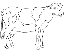 Small Picture New Cow Coloring Pages Best Gallery Coloring D 418 Unknown