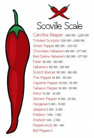 Pepper Chart 2017 Superhot Dragons Breath Chili Pepper Can Kill Heres How