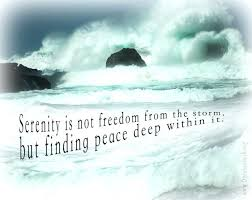 Serenity Quotes Enchanting Serenity Quotes Movie FromTheSix