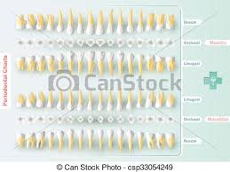 Periodontal Charting Symbols Dental And Periodontal Charting