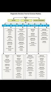Flow Chart For Common Rashes Dermatology Nurse Nurse