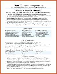 functional resume categories resume categories senior it project manager  resume sample resume resume builder reviews