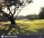 El Diablo Golf Course Citrus Hills FL Stock Photo: 3672397 - Alamy
