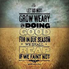 Bible Quotes About Not Giving Up Interesting Keep On Keeping On Quotes That I Love Pinterest
