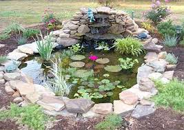Small Picture Best 25 Small ponds ideas on Pinterest Small backyard ponds