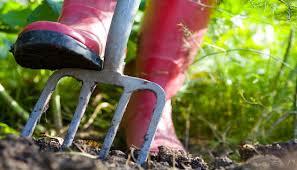 Garden Design Courses Extraordinary Practical CoursesIrene School Of Garden Design