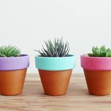 Teracota plant pots Rectangular Painted Terracotta Pots plants And Planters Pinterest Painted Terracotta Pots plants And Planters Home Sweet Home