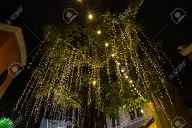 Easy Way Hang Christmas Lights Outdoor Decorative Outdoor String Lights Hanging On Tree In The Garden