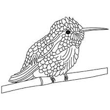 Small Picture 43 best hummingbirds images on Pinterest Drawings Humming birds