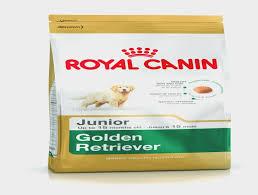 Golden Retriever Junior Dog Food Royal Canin Golden