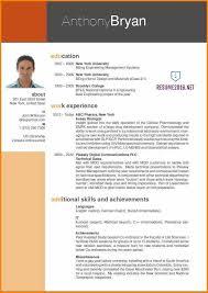 Best Curriculum Vitae Format Resume Example Standard Professional