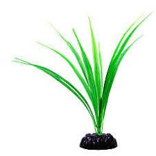 <b>Artificial</b> Aquarium Plants: Shop <b>Fake</b> Plants | PetSmart