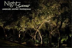 texas outdoor lighting ideas