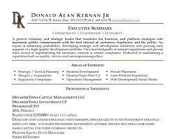 executive summary example business resume executive summary example on a business development 3