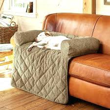 Cool couch covers Hippie Pet Couch Cover Ideas Cool Proof Furniture Fascinating Dog Covers Sofa Throws Hair Resistant Leather Turquoise Couch Cover Englandcitiesmapsinfo Turquoise Couch Cover Sofa Design Ideas Slipcovers Diy Ogesico