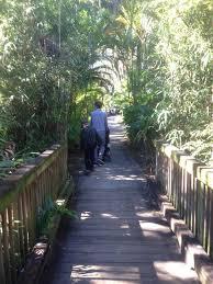 17 photos for florida tech botanical garden