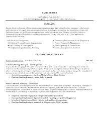 Collection Resume Sample Resume Professional Debt Debt Collector