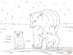 Small Picture Polar Bear Cub Pattern Coloring Coloring Pages
