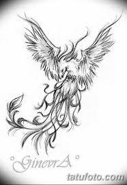 фото эскиз татуировки феникс 18072019 039 Phoenix Tattoo Sketch