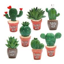 sunny day home office. 1pc Cute Cactus Plants Bonsai Fridge Magnets Home Office Decoration Green Gift L30 Sunny Day E