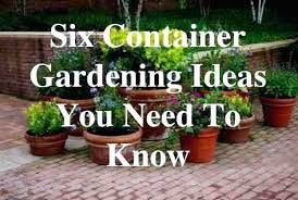 herb container gardening ideas herbs container garden herbs container garden ideas container gardening ideas you need