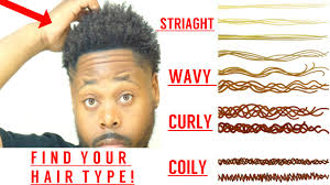 Mens Hair Types Chart What Is Your Curly Hair Type