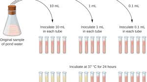 Mpn Chart For Coliforms Most Probable Number Mpn Test Principle Procedure And