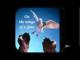 Image result for had i the wings of a dove
