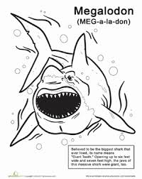 Small Picture Color the Monstrous Megalodon Worksheet Educationcom