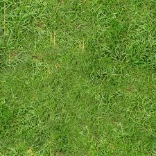 seamless grass texture game. Seamless Grass Texture Game S