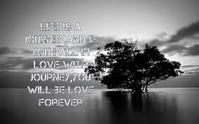 Beautiful Quotes On Life And Love Images