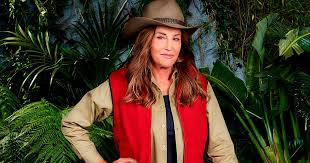 inkl - Polly Hudson: Caitlyn Jenner will bore the ants off us all in I'm A  Celebrity - Daily Mirror